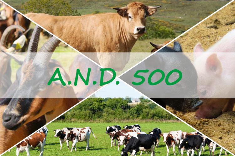 Pour éviter les fortes infestations parasitaires qui arrivent après l'été, n'oubliez pas A.N.D. 500.